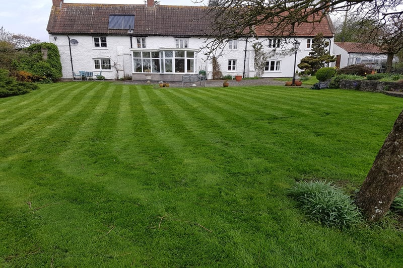 Beautiful Cut Lawn