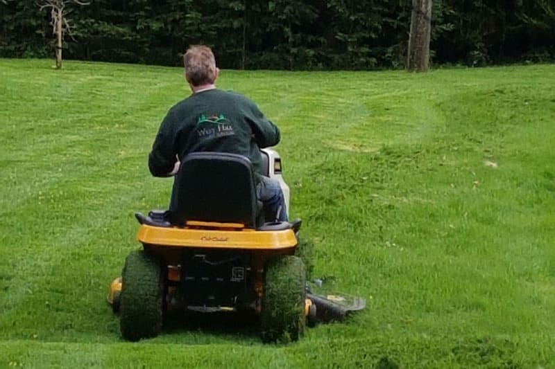 Ride-on Lawn Mowing