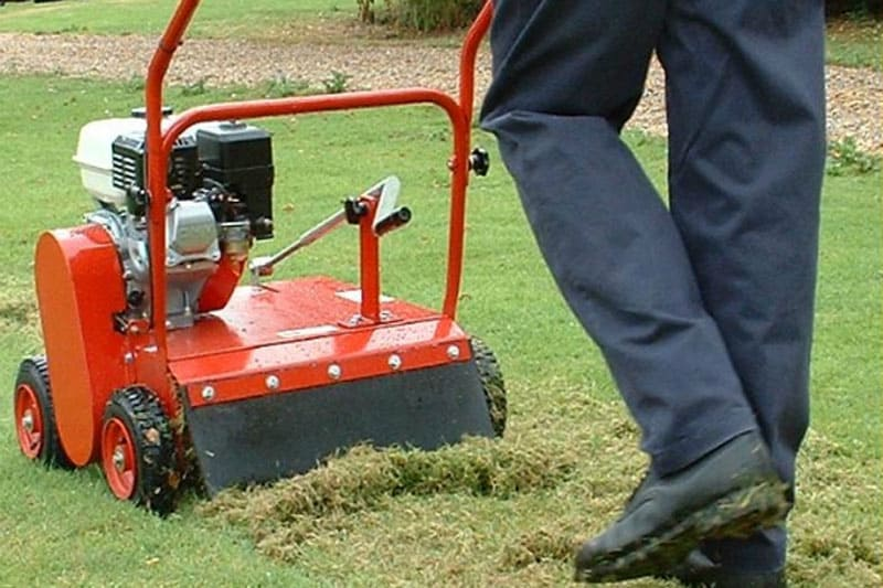 Scarifying and Aerating Lawn